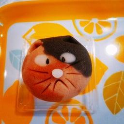 画像 まほろ堂の『猫の日限定お菓子』♪ の記事より 1つ目
