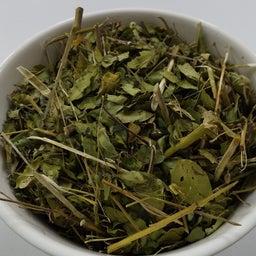 画像 デザートに生葉を使いたい 人と自然に優しい糸満市産モリンガとは(沖縄県) の記事より 3つ目