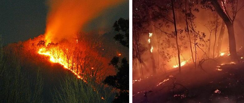 火事 青梅 市 東京都青梅市の火災原因のたき火をしていた人特定!名前・顔写真・住所も。