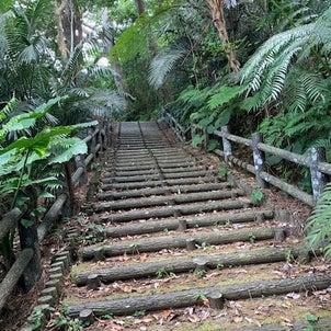 【癒される~バンナ公園で森林浴】の画像