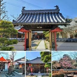 画像 今日は西国街道から勝尾寺の参道を少し北上して「善福寺」を訪れました。 の記事より