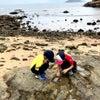【島部】坪洲島 ベンザウ島②  ハイキング 島散策 北湾側 釣魚公コースの画像