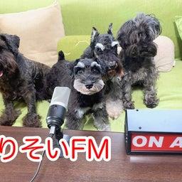 画像 『よりそい FM 』という名のラジオ局!? の記事より 1つ目