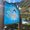 ハワイ観光「シーライフパーク」一般入園が再開!