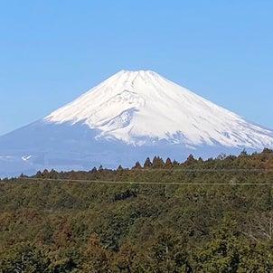 三島スカイウォーク、大山阿夫利神社、などなどの画像