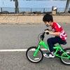 【沙田・大埔】親子でレンタサイクル サイクリングの画像