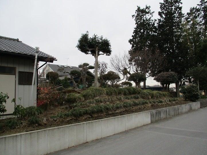良川 古墳 群 仁 栃木県埋蔵文化財センター