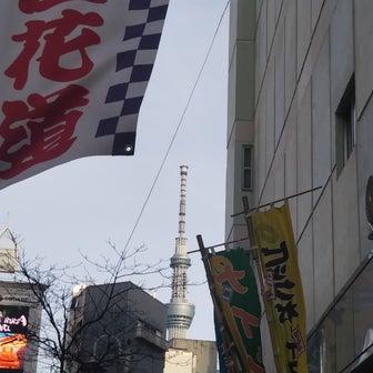 3/1桐龍座恋川木馬夜①