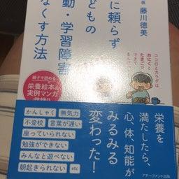 画像 希望の書 「薬に頼らず子どもの多動・学習障害をなくす方法」 の記事より 2つ目