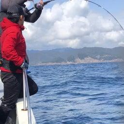 画像 1日 東紀州沖は賑やかでした。 の記事より 17つ目