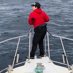 画像 1日 東紀州沖は賑やかでした。 の記事より 12つ目