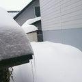 3月と言うのにドカ雪!