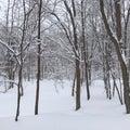 3月なのに・・・この冬一番の降雪