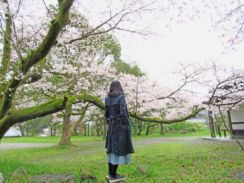 JAPAN TOUR2021 SPRING 第4弾 「東武宇都宮」