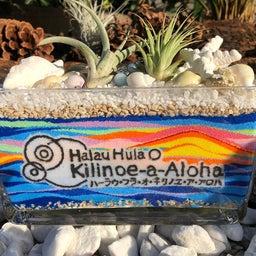 画像 Hula無料体験会‼︎ の記事より