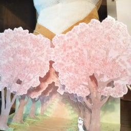 画像 嬉しい桜の便り の記事より 2つ目