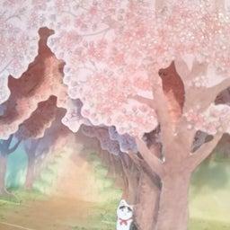画像 嬉しい桜の便り の記事より 4つ目