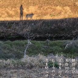 画像 朝日浴び 天白川の 土手を行く むこうのジルも 息を切らせり の記事より
