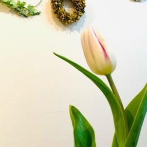 好きなお花は何?飾って楽しんでパワーチャージの画像