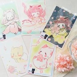画像 残り少なし桜フェス6参加ポストカード! の記事より 7つ目