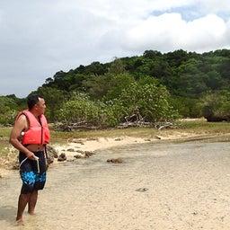 画像 川平湾無人島一周ツアー の記事より 18つ目
