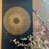 【書と花】 掛け軸×桜 季節を愉しむの画像