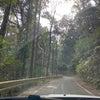 豊橋と三輪山 38のシンクロニシティ④ 石巻山への画像