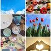 視野が広がる「色彩学」〜美色コーディネート講座新クラススタート!〜の画像