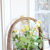 春を飾ろうの画像