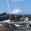 3月14日     春の葉山港の画像