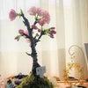 桜♡咲いた♪の画像