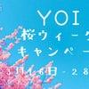 桜week☆キャンペーンのお知らせ♪の画像