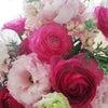 春のお花♡の画像
