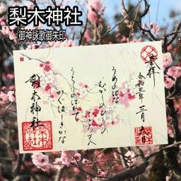 画像 【京都】桜の穴場スポット‼️桜寺「墨染寺」でいただいたステキな【限定御朱印】 の記事より 27つ目