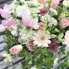 たまらなくかわいい♡春の花たちのセラピーレッスンの画像