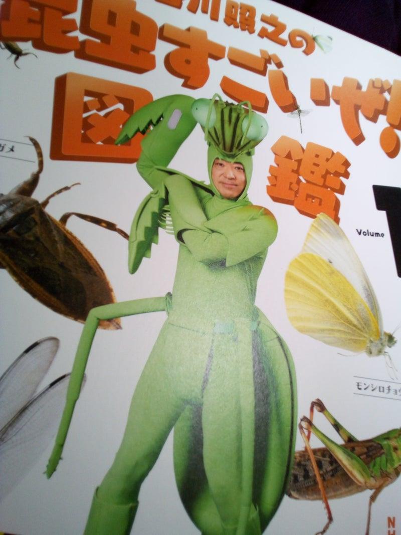 Dvd 昆虫すごいぜ 『香川照之の昆虫すごいぜ!』の「ここがすごいぜ!」 魅力を徹底解剖