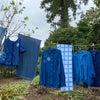 【参加募集】草木染めワークショップ定期開催のお知らせの画像