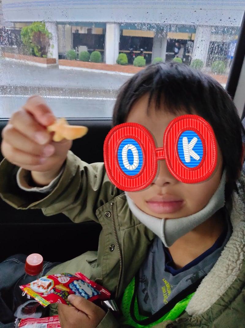 o0810108014914030626 - 3月13日(土) 平塚市博物館 ☆toiro鳥が丘☆