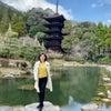 瑠璃光寺・秋吉台ドライブは美しい見どころ満載!の画像