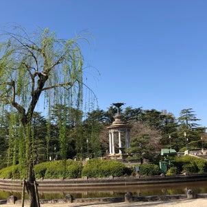 鶴舞公園の桜の画像