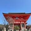 【京都の旅1】大好きな場所からスタートするのが旅の基本の画像