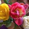 春がまた動き出したかなの画像