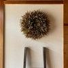竹の葉リースの画像