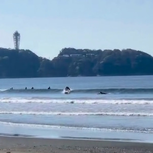 サーフィンスクールdayの画像