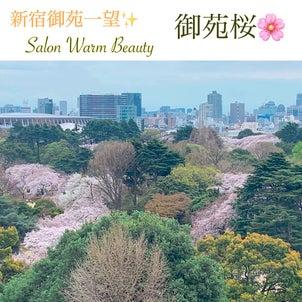 御苑桜 スクール卒業の画像