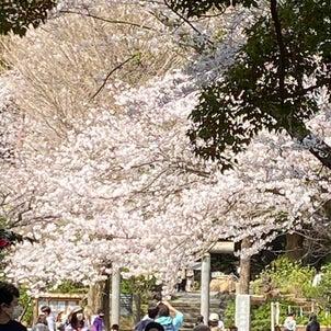 源氏山公園の画像