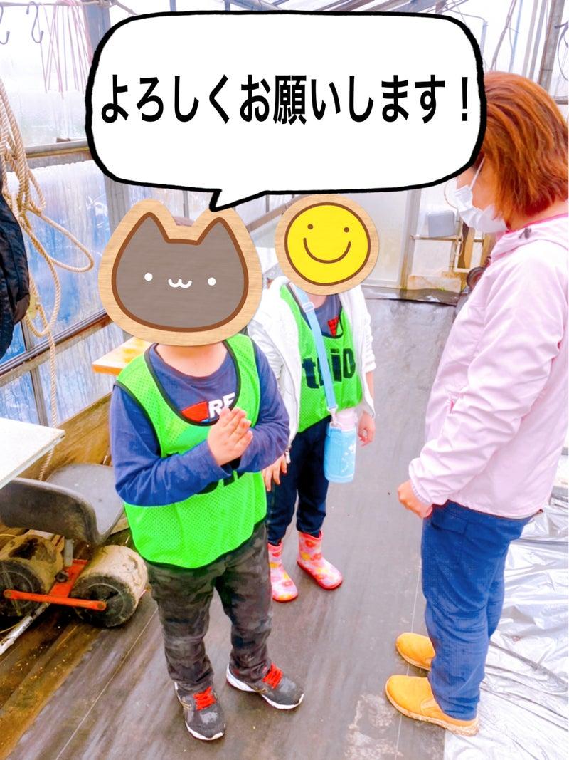 o1912254914917776097 - 3月29日(月)☆toiro金沢文庫40☆【旬のくだものを食べよう】