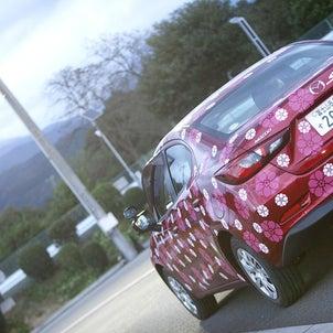 世界にたった1台しかないラッキー教習車。の画像