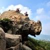 【赤柱】犀牛石 Rhino Rock 斜炮頂 サイの岩を眺めにの画像