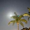満月の明るい中 エジプトを出た人たちを思いましたの画像